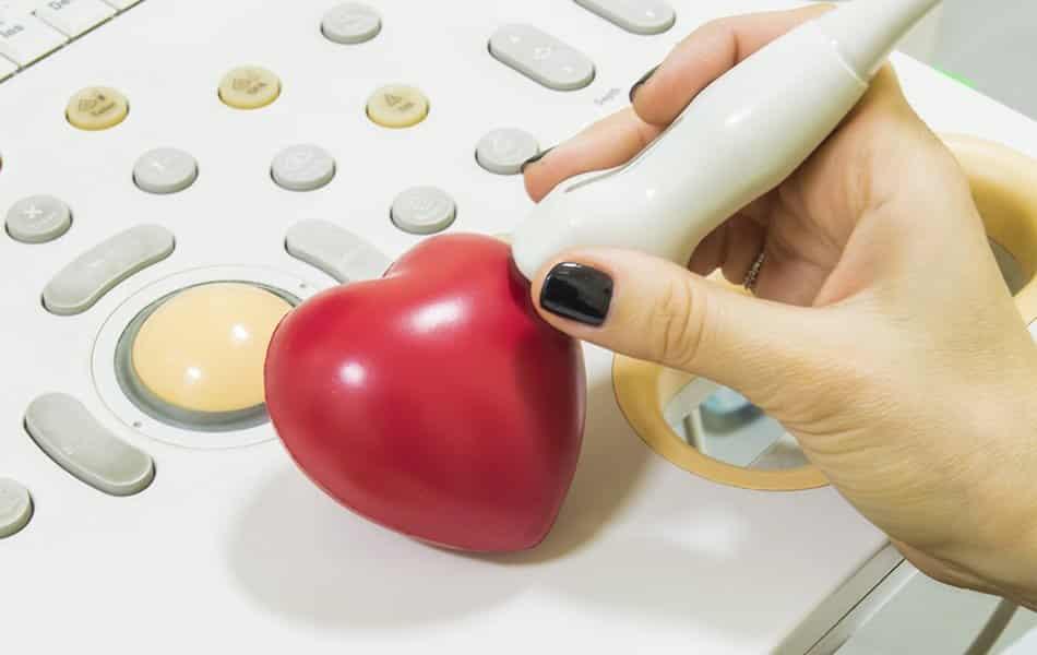 Echocardiography - SCCVS